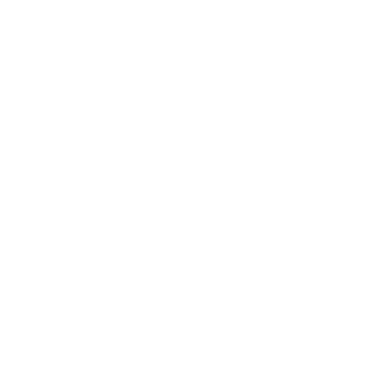 homeIcon